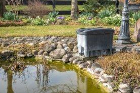 Gartenteich bauen von fisch und pflanze bis zur pflege for Gartenteich einsatz