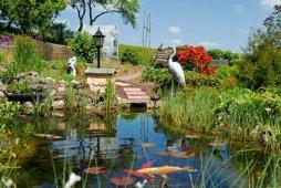 gartenteich bauen: von fisch und pflanze bis zur pflege, Garten Ideen